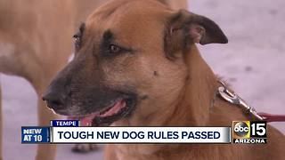 Tempe City Council approves new dog law - Video