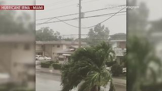 Tropical storm conditions starting in Miami - Video