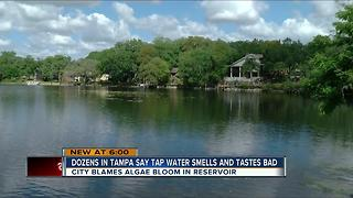 Tampa residents complain of foul-tasting and stinky tap water - Video