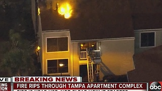 Fire rips through Tampa apartment complex - Video