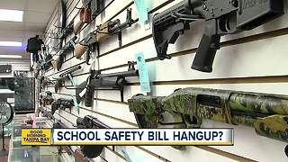 Florida House passes school safety bill, sending it to Governor Scott's desk - Video