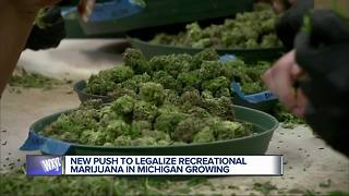 Push to legalize marijuana in Michigan growing