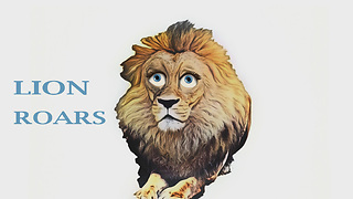 What Sound Lion Does?   - Video