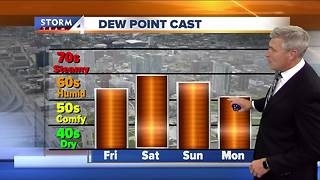 Friday is mostly sunny and humid - Video