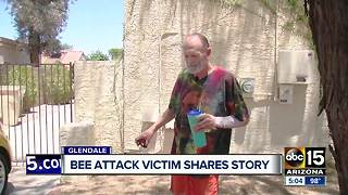 Glendale bee attack victim shares story