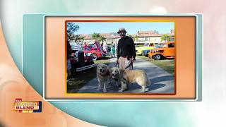 Cape Coral Charity Car Show - Video