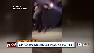Video shows guy killing chicken at Las Vegas party - Video