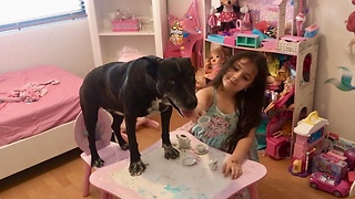 Little girl throws tea party for her doggy