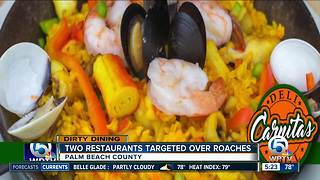 DIRTY DINING: 45 live roaches found inside Lake Worth Latin American restaurant - Video