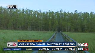 Audubon's Corkscrew Swamp Sanctuary reopens after Irma - Video