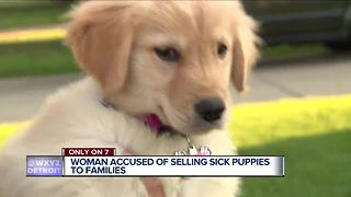 Metro Detroit woman warns about breeder selling sick puppies online - Video