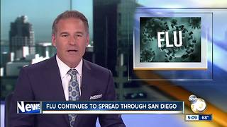 New San Diego flu deaths reported - Video