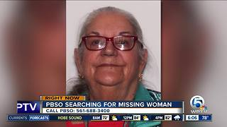 Karen Terry: PBSO searching for missing woman - Video