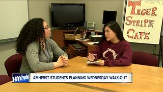 Western New York students organize walkouts to remember Parkland shooting victims - Video