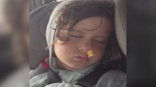 Little Boy Sleeps With A Fish Shaped Cracker In His Nostril