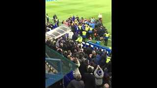 Fan Video Shows Moment Hiddink Knocked Over During Chelsea v Spurs Brawl - Video