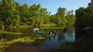 U.S. of Awesome: Louisiana Bayou