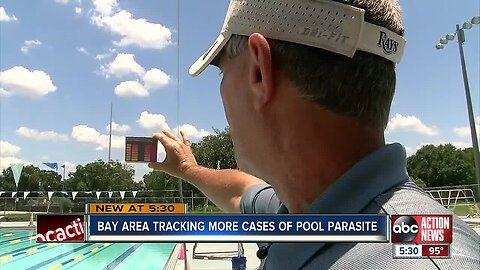 Tampa Bay area tracking more cases of pool parasites