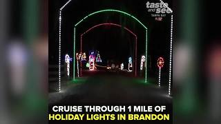 Wonderland of Lights in Brandon, Florida | Taste and See Tampa Bay - Video