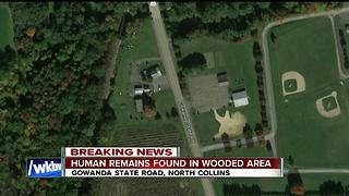 Human remains discovered in North Collins - Video