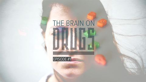 The Brain on Drugs: Ecstasy