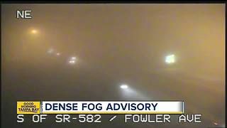 Dense Fog Advisory in effect until 10AM Thursday morning - Video