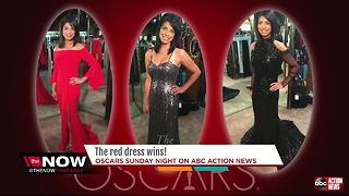 Sarina Fazan's Oscar gown, goes to charity - Video