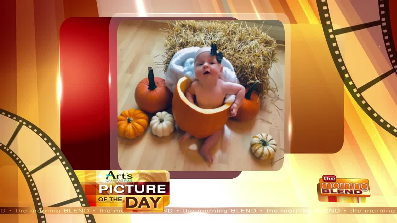 Art's Cameras Plus Picture of the Day for November 18!