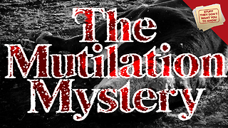 Stuff They Don't Want You to Know: Cattle Mutilation