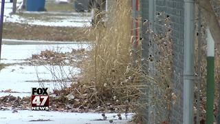 Could remains found in Montana be missing Skelton boys? - Video