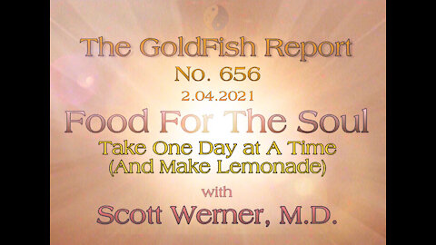 The GoldFish Report No. 656 - [Time to Participate] with Scott Werner, M.D.