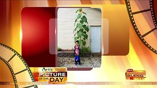 Art's Cameras Plus Picture of the Day for October 4! - Video