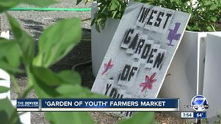Garden of Youth program helping students with special needs develop garden related job skills - Video