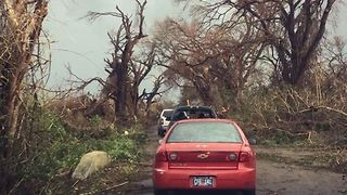 Trees Lay Strewn Across St. Croix Roads in the Aftermath of Hurricane Maria - Video