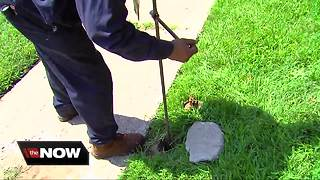 More than 17K Detroit households could see water shutoffs - Video