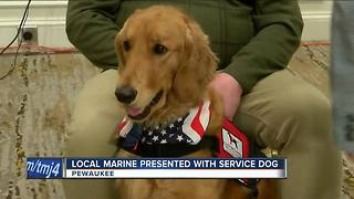 Veteran presented with service dog