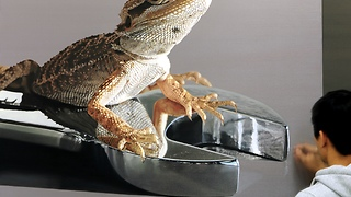 Lizard oil painting looks incredibly real - Video