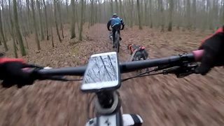 Racing line – Cyclists race being pulled by dogs - Video