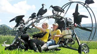 Microlight Flies With Rare Birds - Video