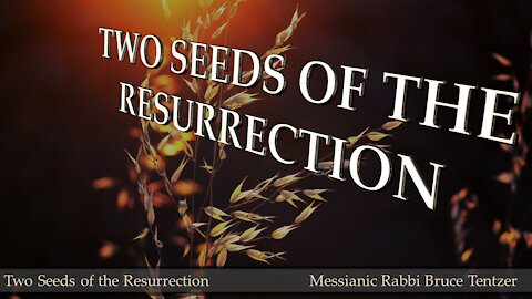 Two Seeds of the Resurrection