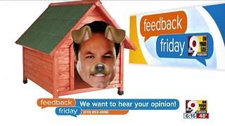 Feedback Friday: Steve in the doghouse - Video
