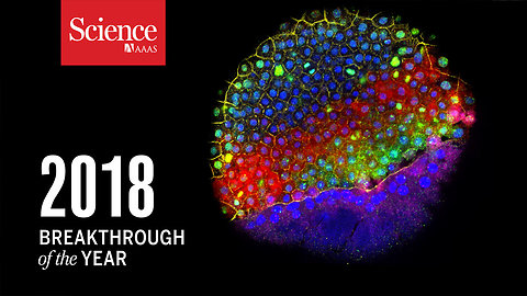Science Magazine's 2018 Breakthrough of the Year