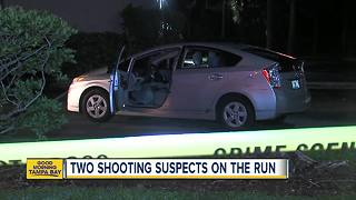 St. Pete police search for suspects in shooting - Video
