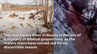 """Mysterious River of """"Blood"""" in Siberia: Biblical Plague? - Video"""