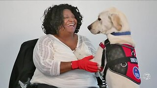 Freedom Service Dogs - Volunteer!