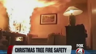 Christmas tree fires - Video