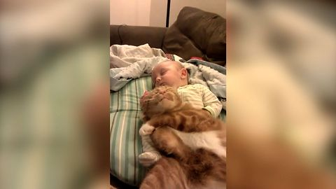 14 Cutest Snuggling Babies