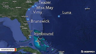 12-Foot Great White Shark 'Ironbound' Tracked Near Miami For Holidays