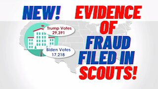 NEW Evidence of Fraud Just Filed in SCOTUS! What REALLY HAPPENED!!!