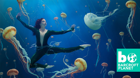 Dancer Makes Waves With Conservation Campaign